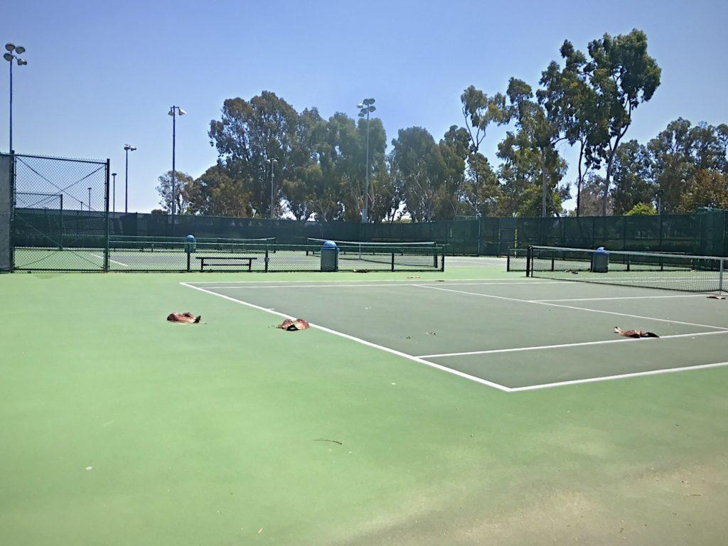 wilson park tennis