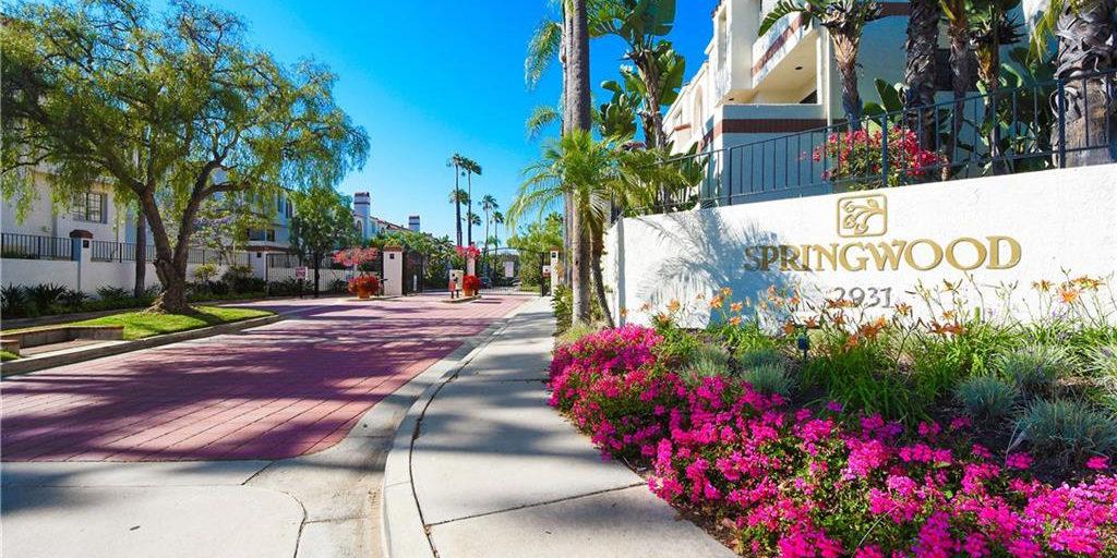 Springwood Plaza Del Amo